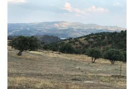 Manisa Salihlide Satılık Arazi