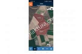 Burhaniye Çoruk'ta 104 Dönüm Satılık Arazi