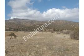 Derbent Çiftliközun de Sulak Yola Yakın Satılık 1,862 m2 Tarla